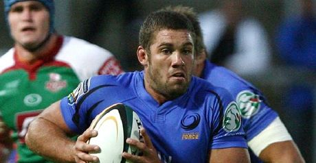 Hodgson: Staying put at Western Force