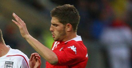 Evans: Wales' goalscorer