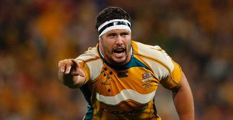 Baxter: Hailed Wallabies