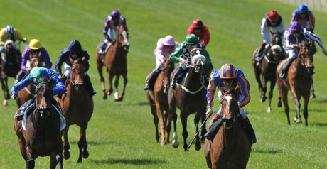 Again lands the Irish 1000 Guineas.
