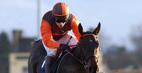 Long Run: Favourite for the Paddy Power Gold Cup