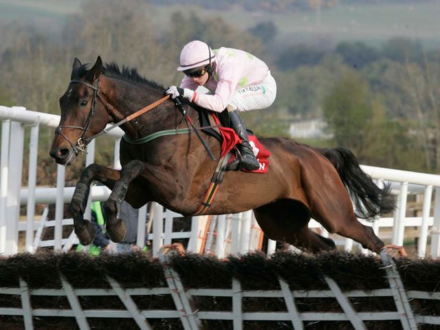 Arvika Ligeonniere: Drinmore Novices Chase entry