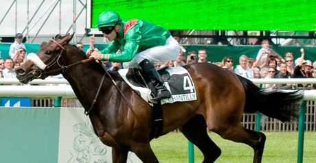 Sarafina: Survived stewards enquiry after winning Prix Foy