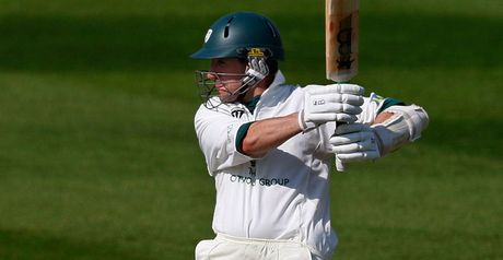 Mitchell: believes Worcestershire can survive in the top flight