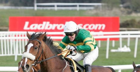 Captain Cee Bee: In great form ahead of the Grimes Hurdle