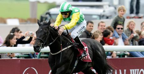 Wootton Bassett: Fifth at Longchamp