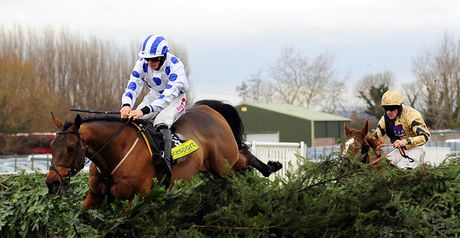 Hello Bud: Leads Royal Rosa over the last at Aintree.