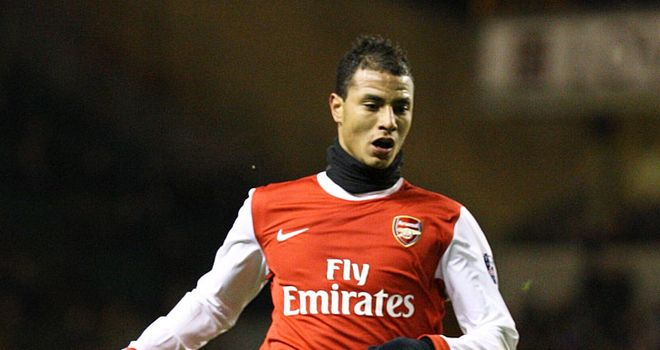 Marouane Chamakh: Soon to be on his way to the African Cup of Nations and will not be loaned out