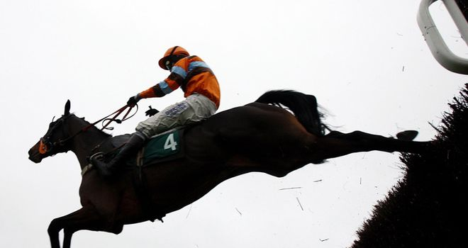 Hell's Bay winning at Cheltenham