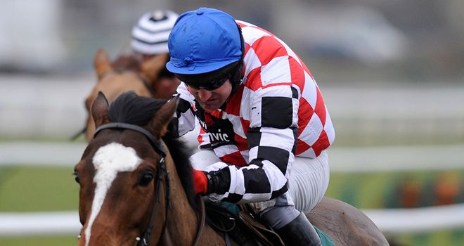 The Giant Bolster: Gutsy winner
