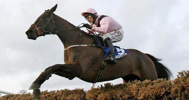 Oscars Well: Fell in the Craddockstown Novice Chase at Punchestown at the weekend
