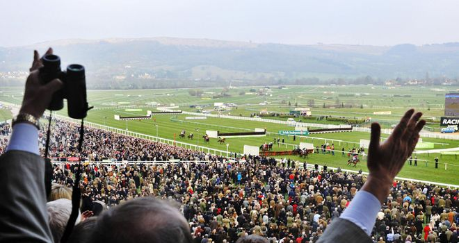 Get the complete Cheltenham Festival buzz with skysports.com