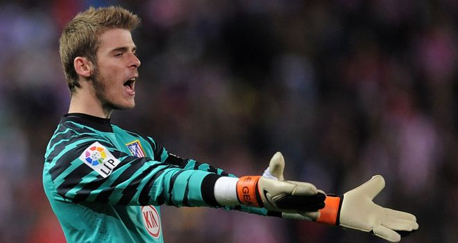 De Gea: Has been backed by Van der Sar to succeed at United