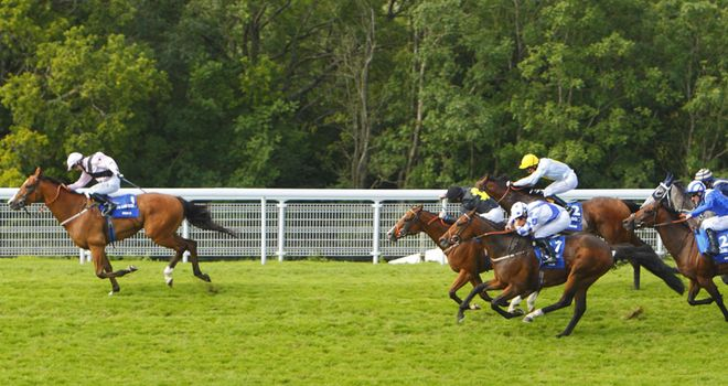 Jamesie will be aimed at this year's Stewards' Cup