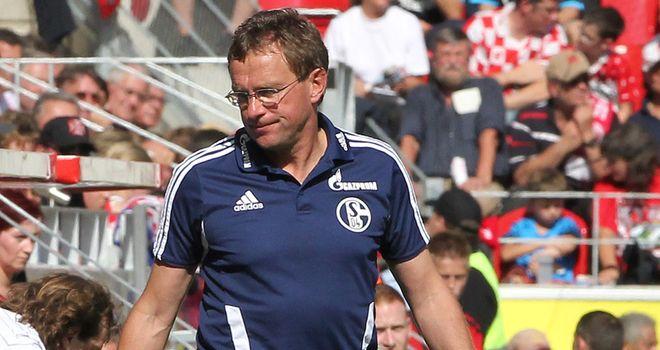 Ralf Rangnick: Former Hoffenheim coach
