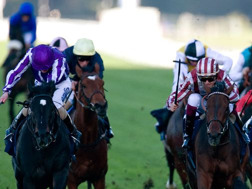 Cirrus Des Aigles (R): Winning last year