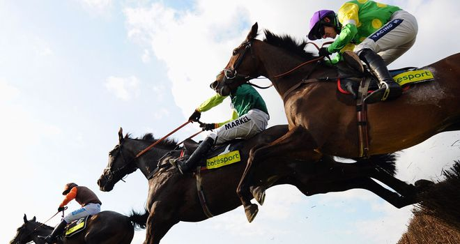 Cheltenham: Hopes are rising