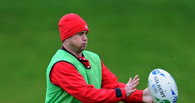Shane Williams: bringing curtain down on Test career against Australia