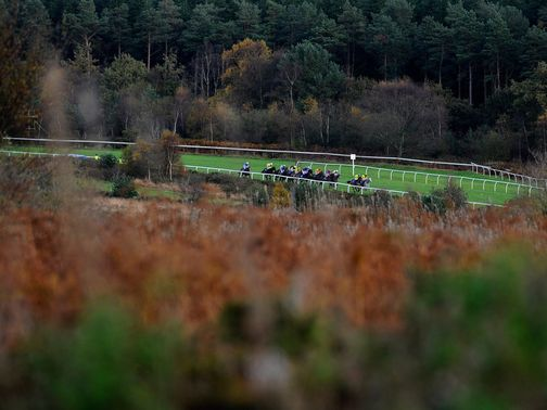 Exeter: Will host this season's Peterborough Chase