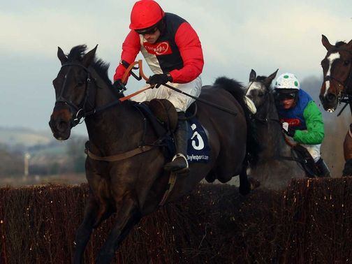 Poquelin: Heads 22 Paddy Power entries