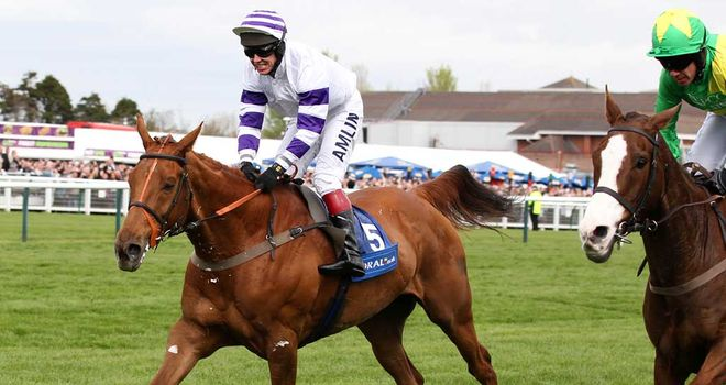 Beshabar: Set to be prepared for a tilt at the John Smith's Grand National at Aintree without the aid of a prep run