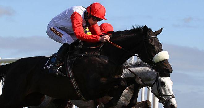Big Buck's: Faces five rivals at Newbury