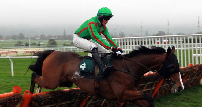 Decoy wins at Cheltenham