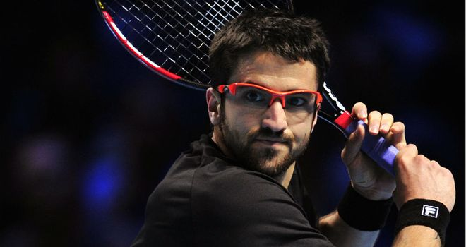 Janko Tipsarevic: Claimed first ever victory over fellow Serbian Novak Djokovic