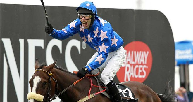 Moon Dice: Cheltenham target next weekend