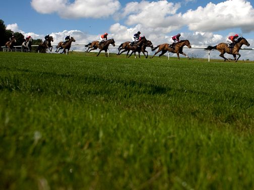 Lingfield: Inspection for Tuesday card