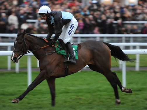 Village Vic: Has been well backed to improve from his hurdling debut