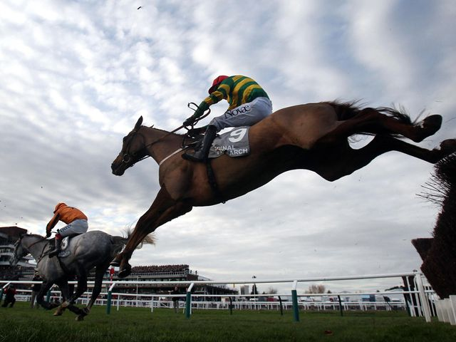 Quantitativeeasing: Cheltenham winner