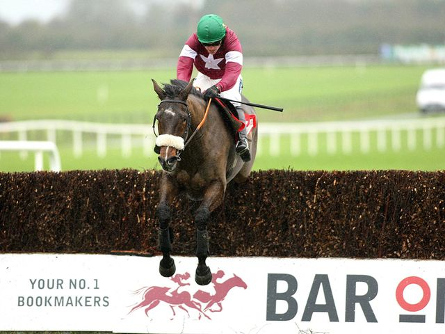 Bog Warrior: Punchestown win