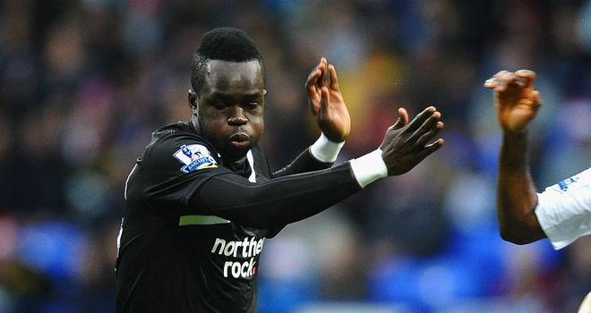 Cheick Tiote: The Newcastle midfielder has made 16 appearances for the high-flying Magpies this season