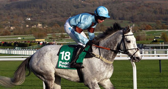 Divers: Ready for Cheltenham