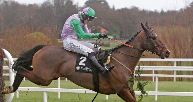 Hidden Cyclone: Will miss the Cheltenham Festival