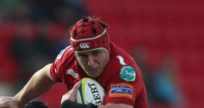 Johnathan Edwards: Will captain the Scarlets with Rob McCusker absent
