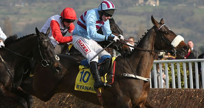 Rubi Light: Ruled out of Cheltenham
