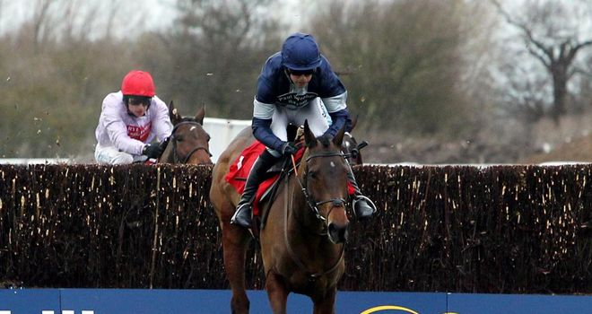 Alasi: Set to run over hurdles at Sandown