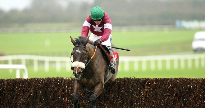 Bog Warrior: Intended runner at Naas with ground too quick at Cheltenham