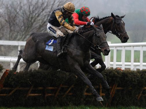 Boston Bob: Could make his eagerly awaited chasing bow next Thursday