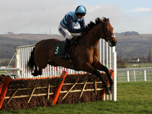 Pearl Swan: Being aimed at the Betfair Hurdle