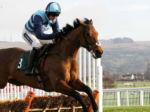Pearl Swan: Could run in the Champion Hurdle