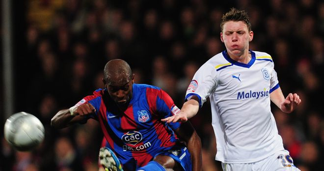 Anthony Gardner: Says Palace will be feeling confident when they head to Wales