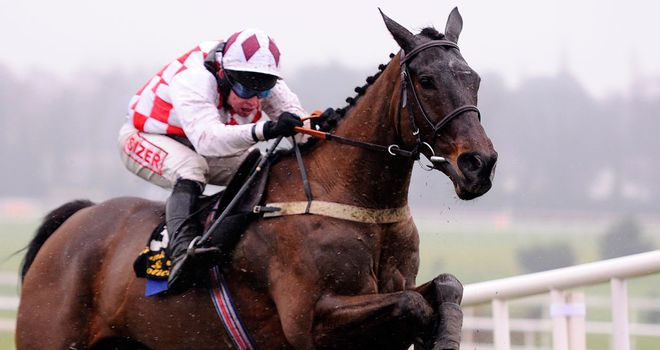 Flemenstar: Gold Cup hopeful