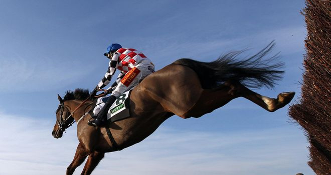 The Giant Bolster: Ran out an impressive winner