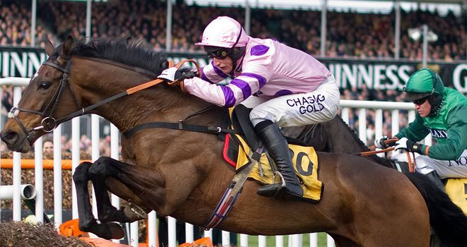 Zarkandar: Working well at home ahead of Elite Hurdle at Wincanton