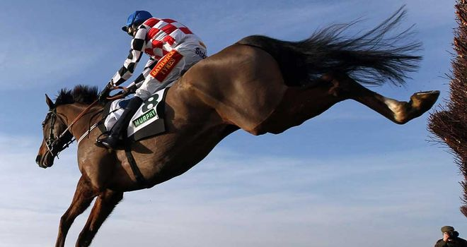 The Giant Bolster has recovered well from Kempton