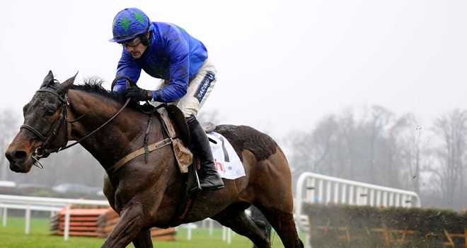 Hurricane Fly: Champion hurdler