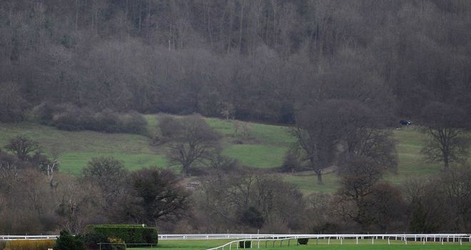 Cheltenham: Set to inspect ahead of New Year's Day